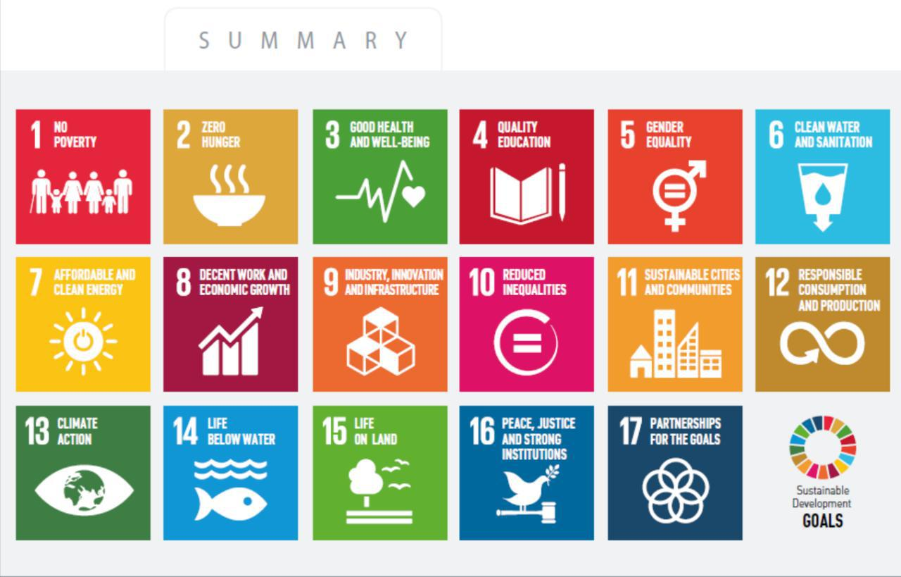 Implementing the 2030 Sustainable Development Goals in Ukraine: analysis of government strategies and public policy